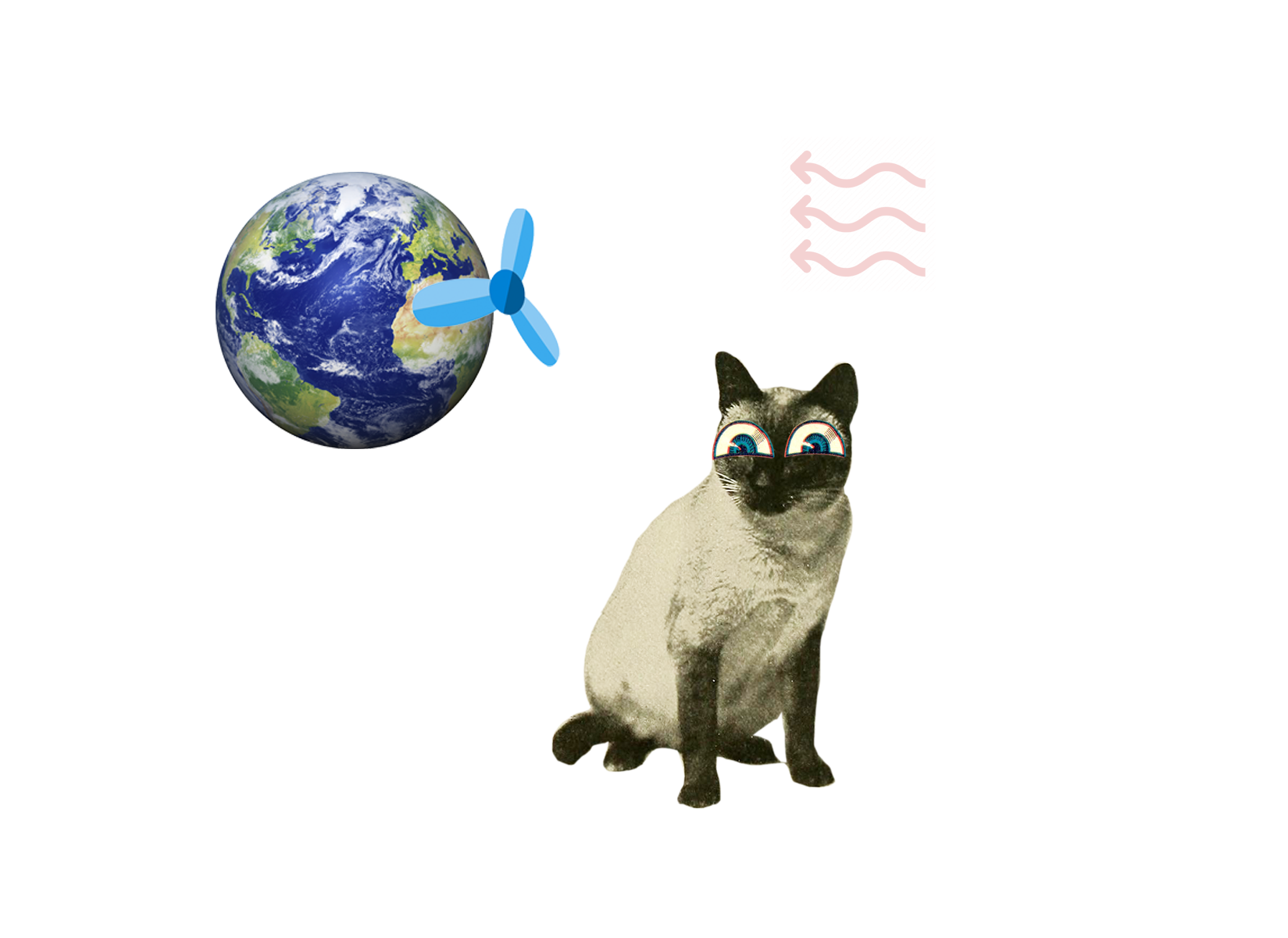 Energi för framtiden - bild på katt